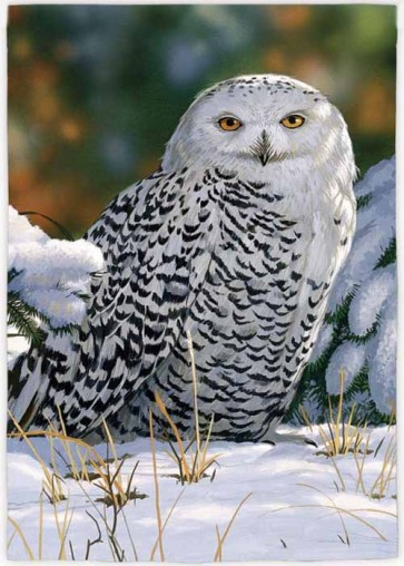 Snow Owl    Garden Flag