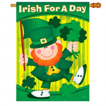Irish for a Day house Flag