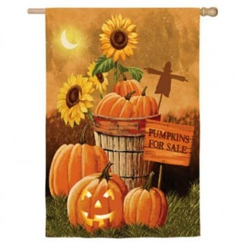 Pumpkin Patch for Sale (2 different Sides)