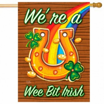 We're a We Bit Irish House Flag
