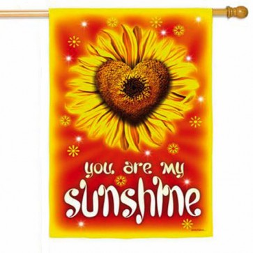 You are my Sunshine House Flag