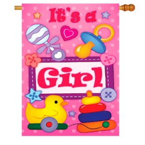 Baby Girl House Flag