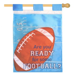 Are You Ready for Some Football Blue and White Fall House Flag